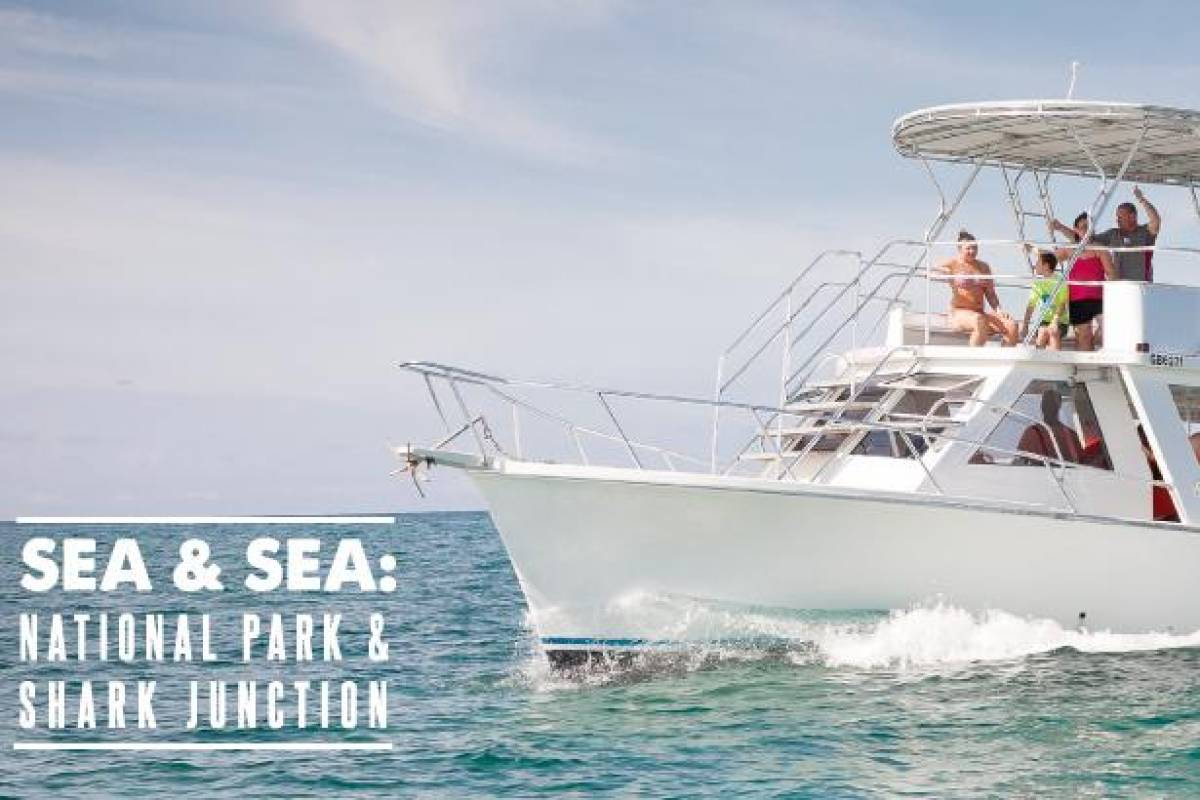 Bahamas Adventures SEA & SEA: NATIONAL PARK & JUNCTION