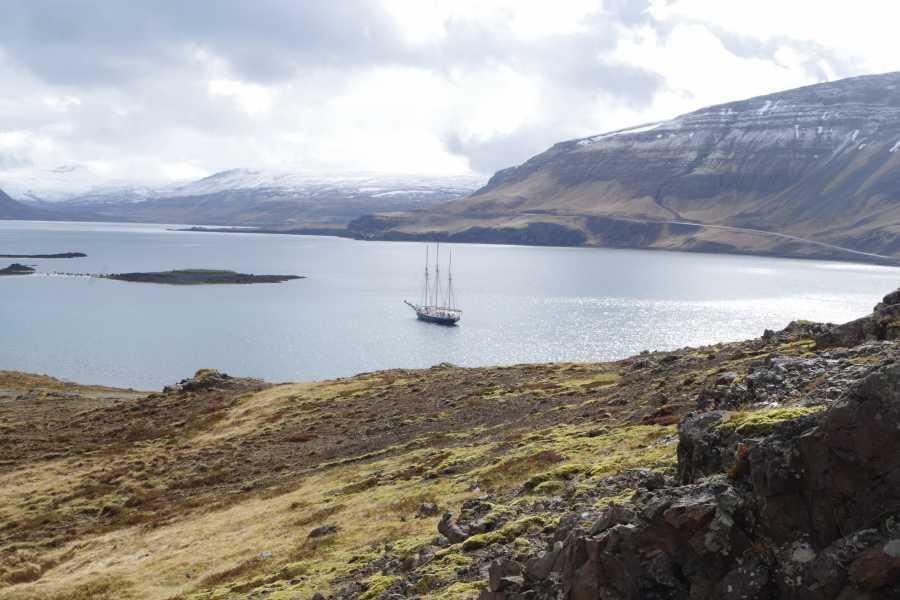 Maybe Sailing A Viking Saga