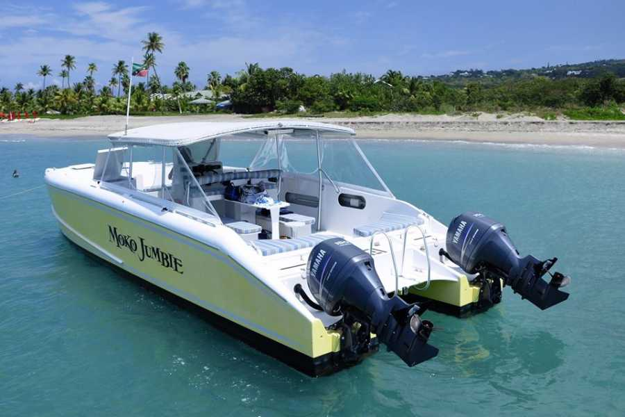 Blue Water Safaris Powerboat Custom Charter