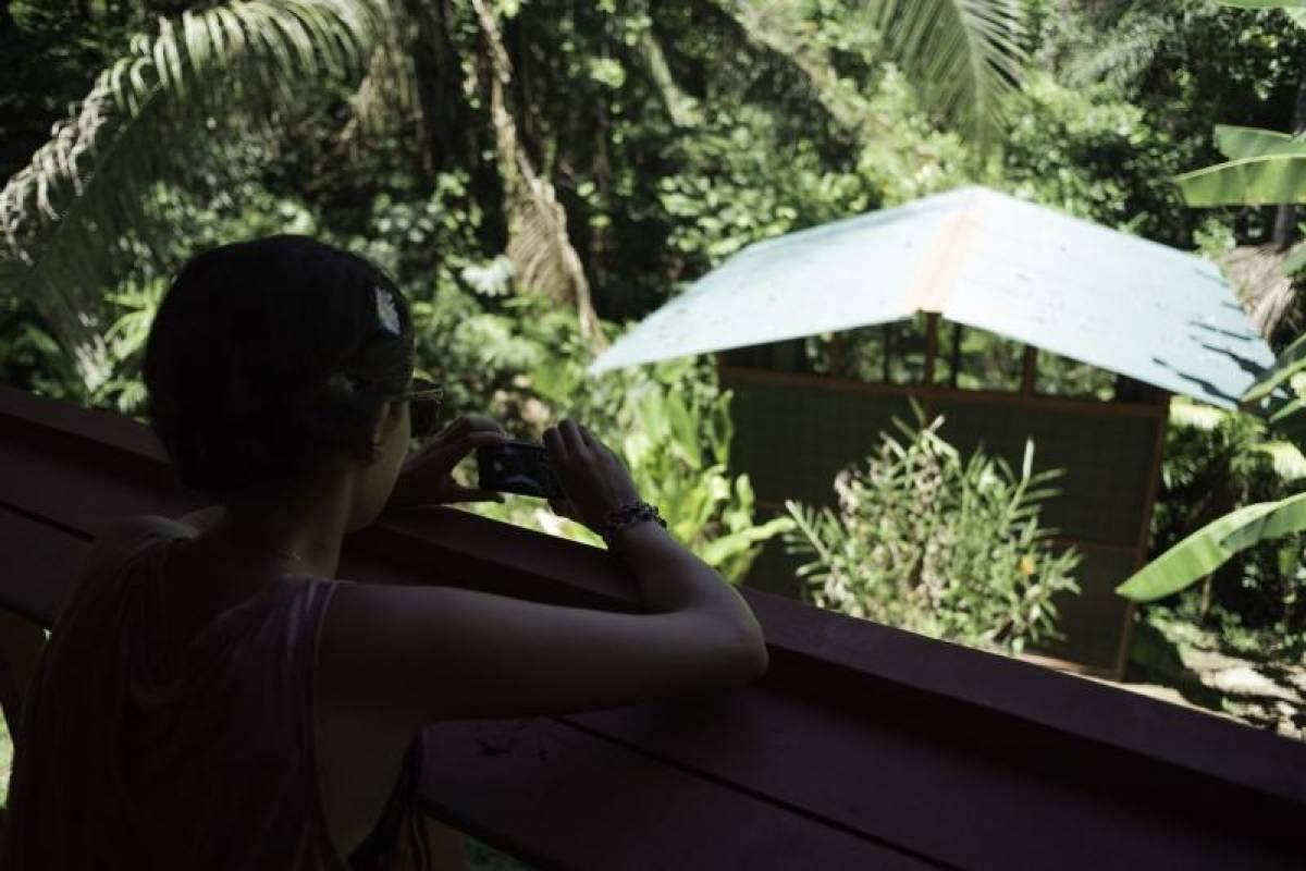 Uvita Information Center Night in the Jungle