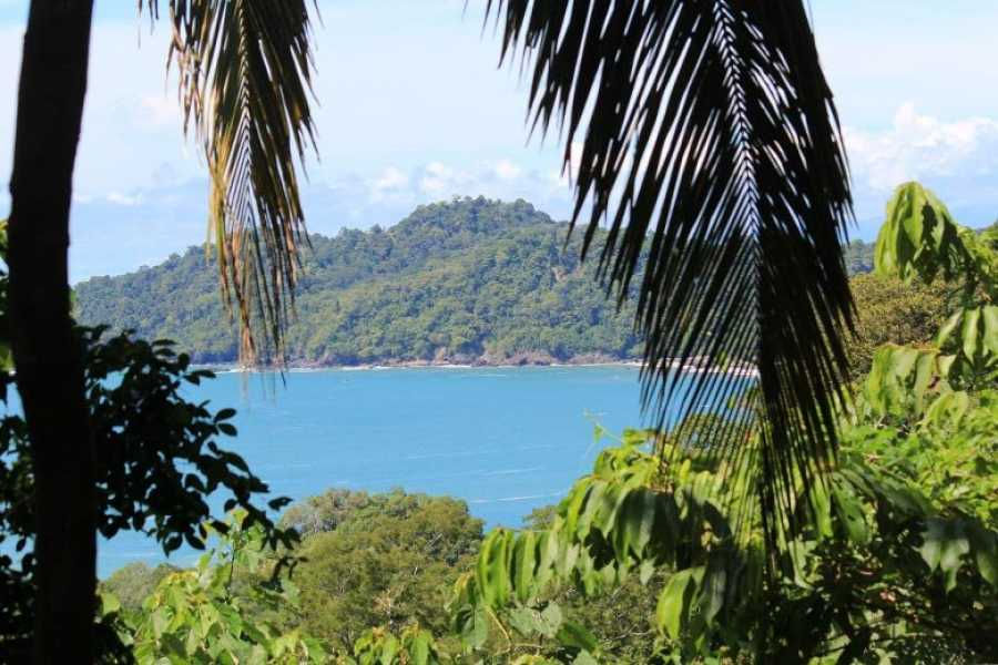 Uvita Information Center Hike at the Manuel Antonio National Park