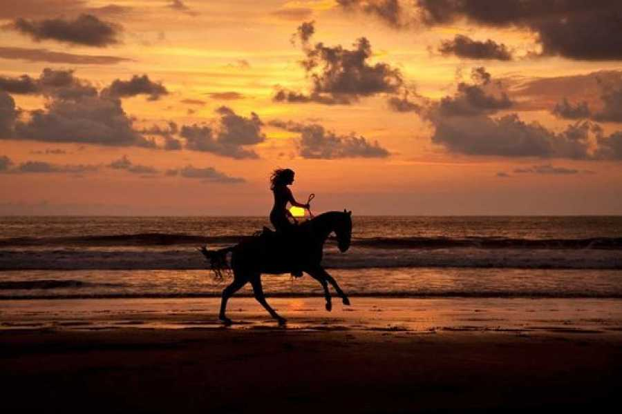 Uvita Information Center Sunset at the beach Horseback Riding at La Merced Wildlife Refuge