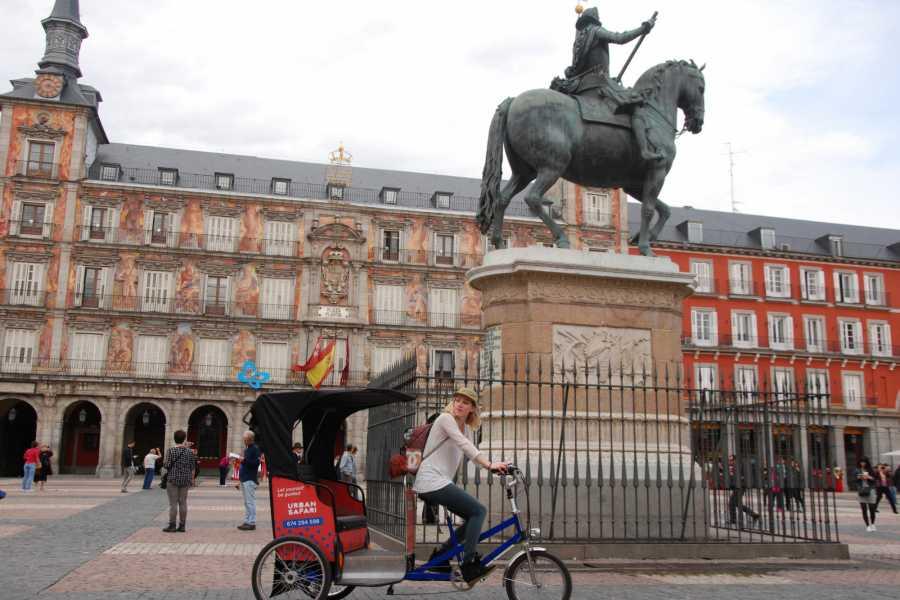 Urban Safari Tours Bike-Taxi: Back to the Future