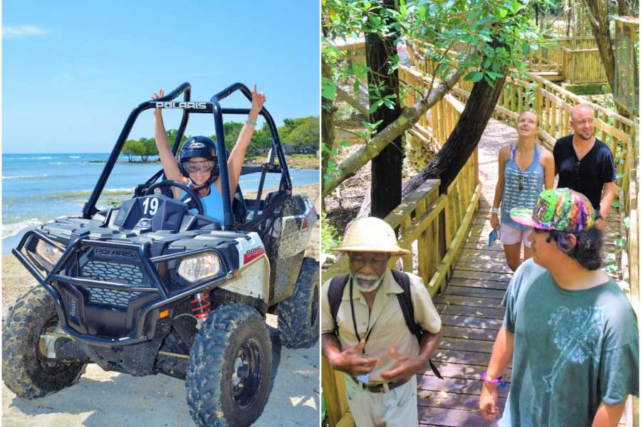 Jamwest Motorsports and Adventure Park Combo Safari + ATV + lunch