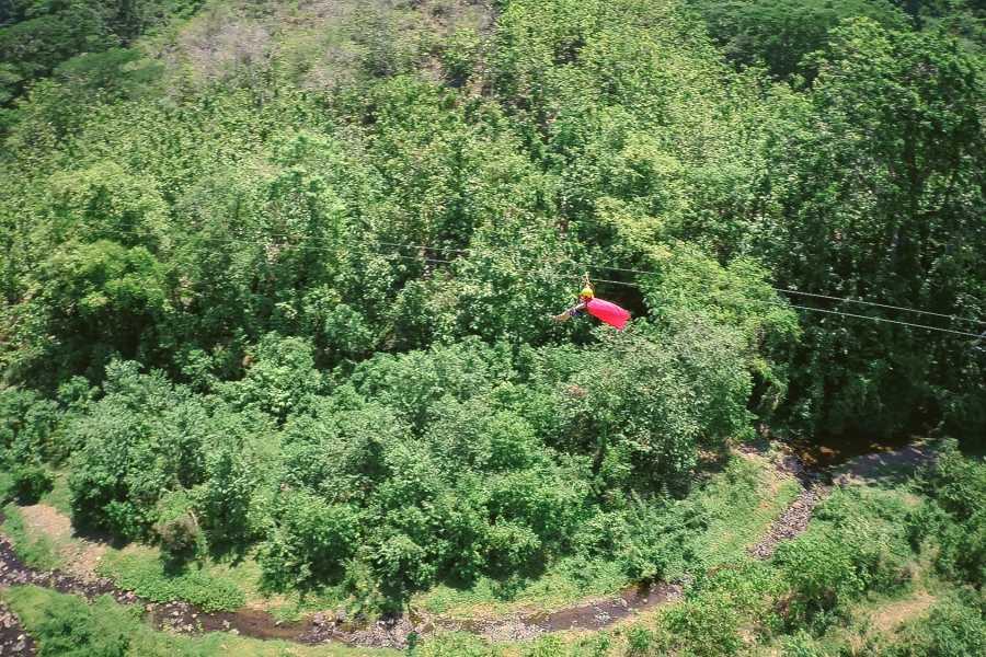 Pura Vida Casas Adventures 5. Adventure Park: Adrenalin Combo Package