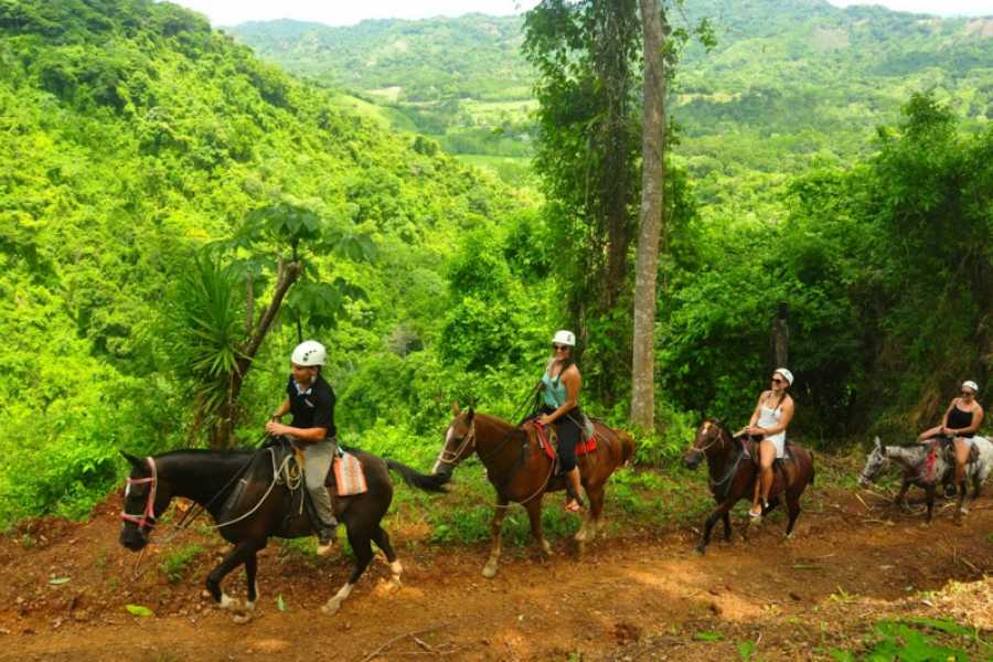 Pura Vida Casas Adventures Los Suenos: Horseback Riding