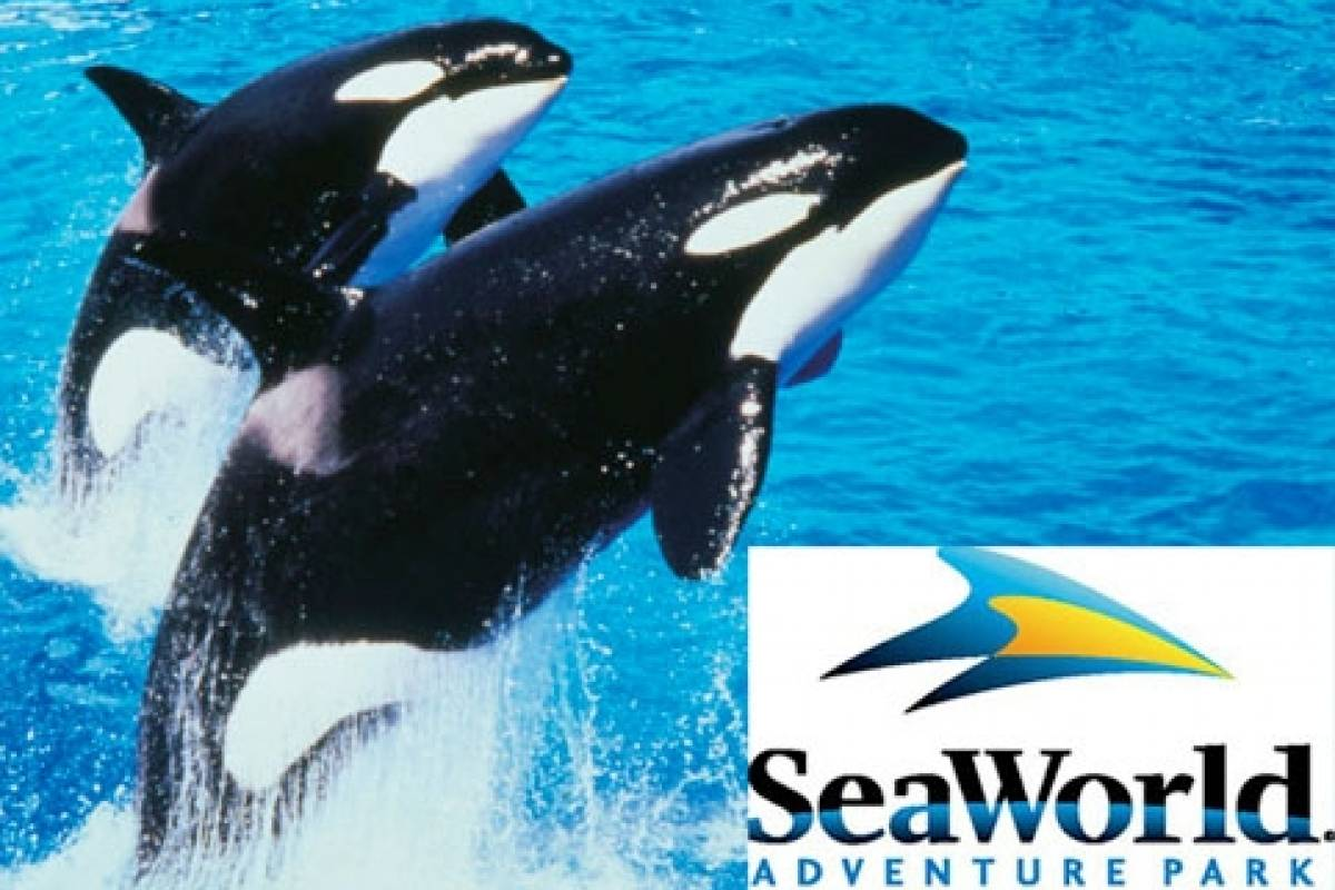 "Dream Vacation Builders Sea World San Diego ""Eat Free"" Single Day with All Day Dining from L.A."