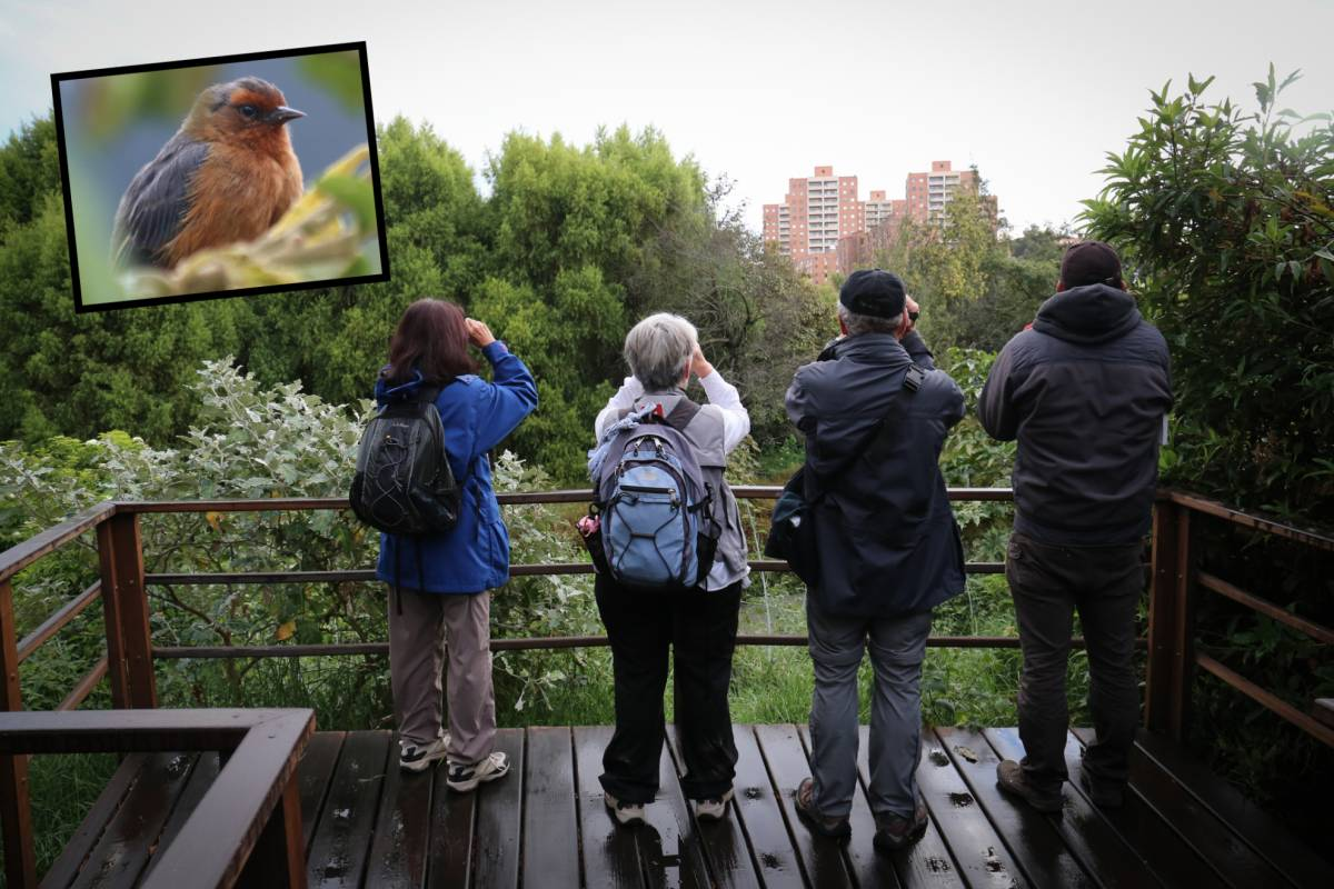 Andes Ecotours Urban Wetlands & Botanical Gardens