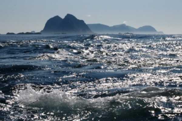 Aqua Lofoten Coast Adventure AS Malstrømmen Havsafari Vinter