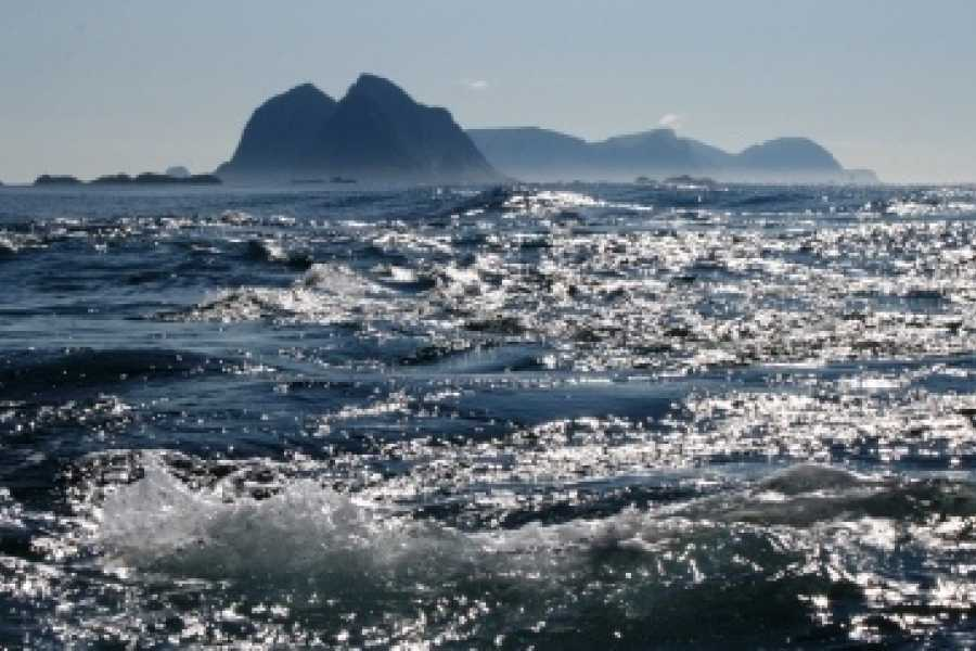 Aqua Lofoten Coast Adventure AS Winter sea safari to the Maelstrom
