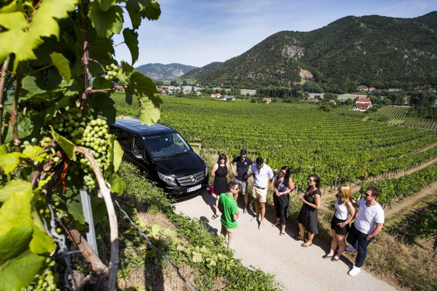 Vienna Explorer - Tours and Day Trips Hidden Wachau Valley