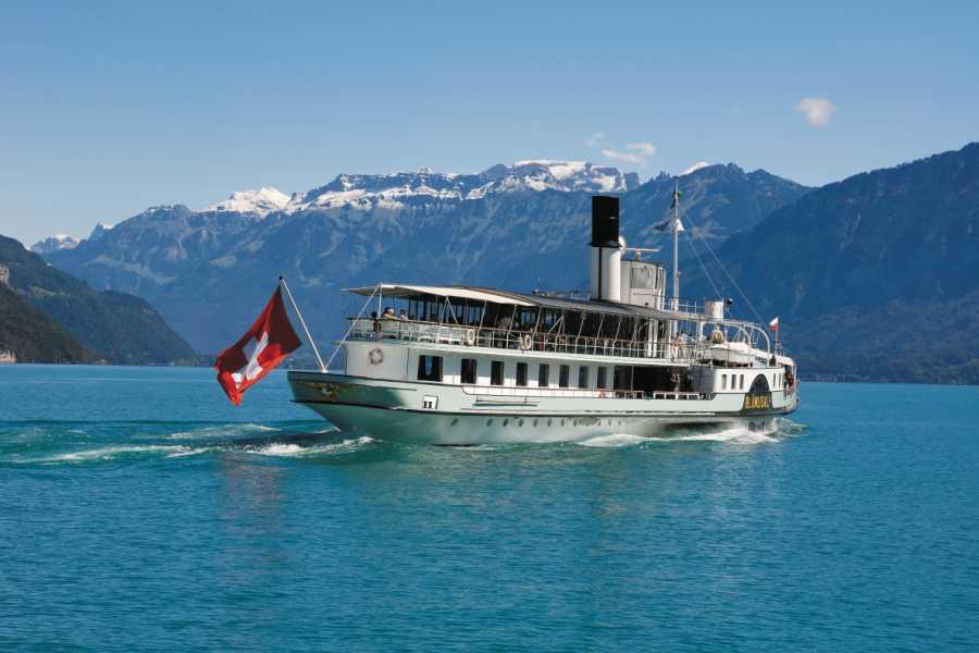 BLS Schifffahrt B2C Carte journalière pour le lac de Thoune et de Brienz