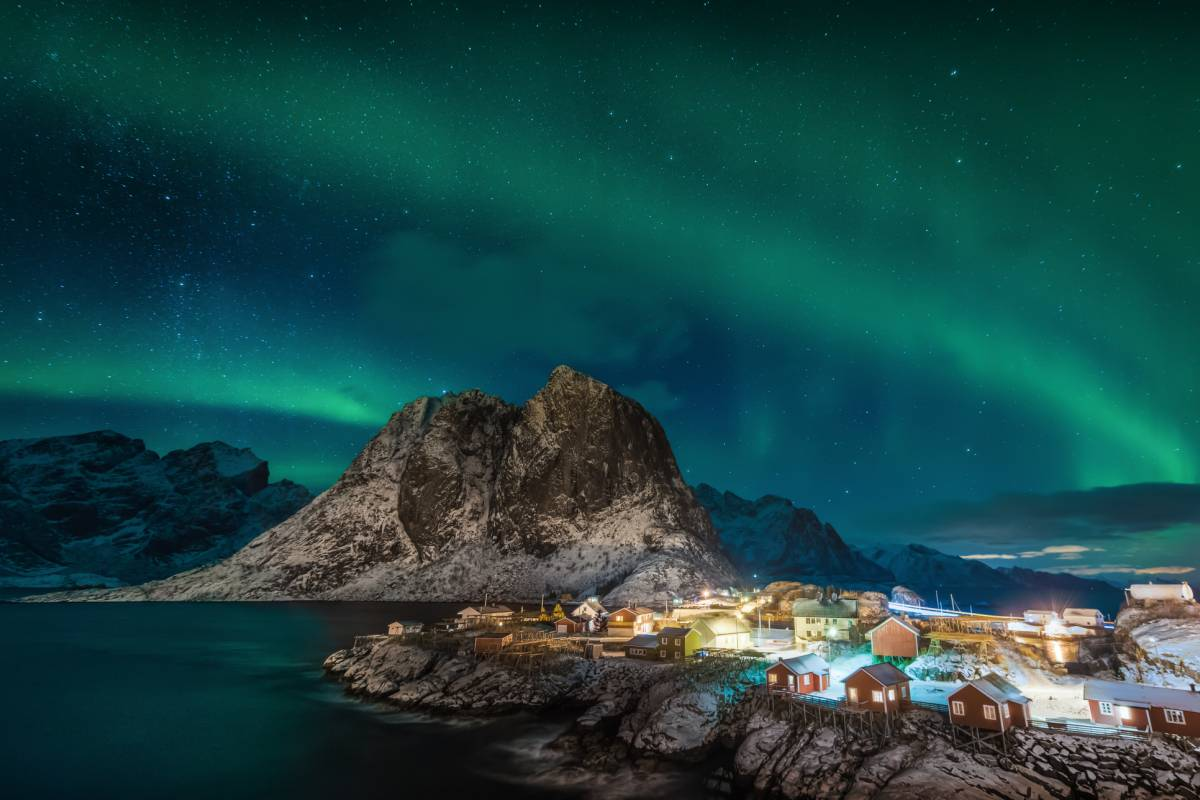 WildPhoto Norway Lofoten