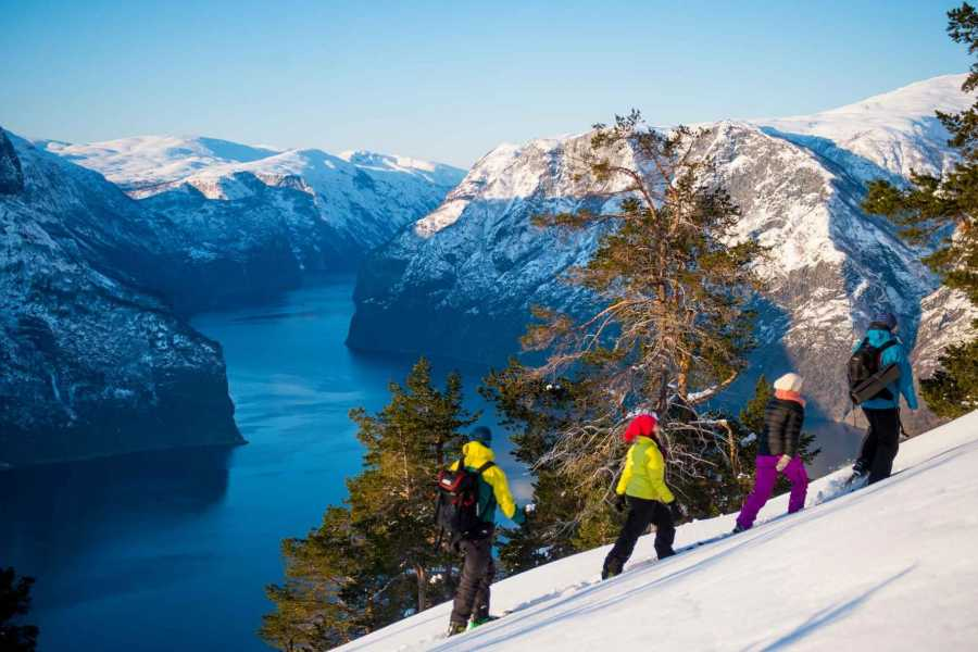 Norway Insight Magic winter adventure
