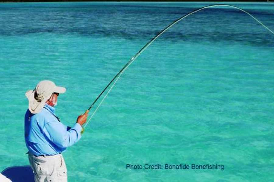 TheRealBahamas LLC Flats Bonefishing Sports License