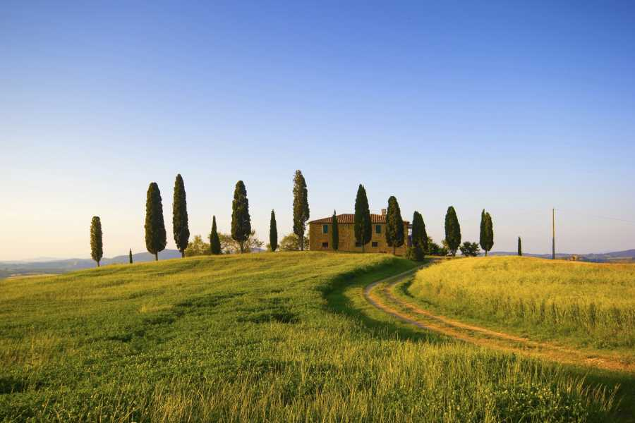 ACCORD Italy Smart Tours & Experiences TOUR DI GRUPPO - CHIANTI ROMANTICO AL TRAMONTO IN MINIVAN