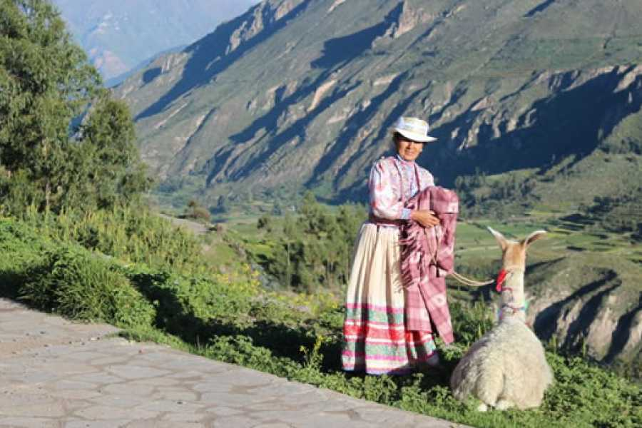 mystic lands peru COLCA CONVENCIONAL 2D/1N