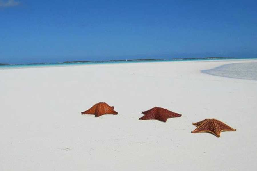 TheRealBahamas LLC Exuma - George Town: The 3 Hr Tour: Off Island Boat Tours