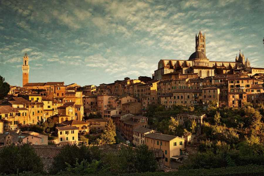 ACCORD Italy Smart Tours & Experiences SIENA - TOUR PRIVATO IN MINIVAN