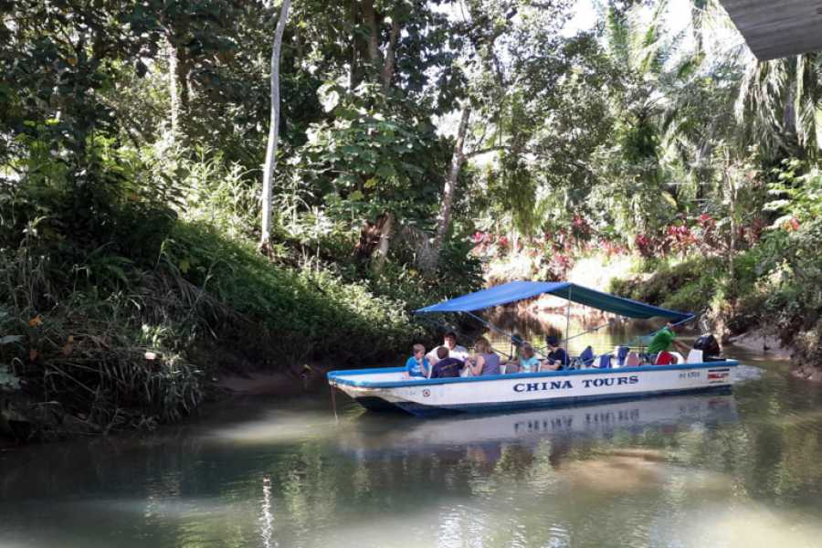 Pura Vida Casas Adventures DAMAS MANGROVE DAY TOUR