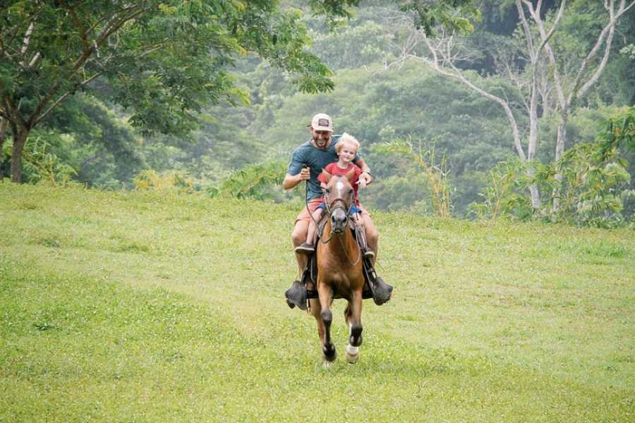 Pura Vida Casas Adventures 3. Adventure Park: Horseback Riding