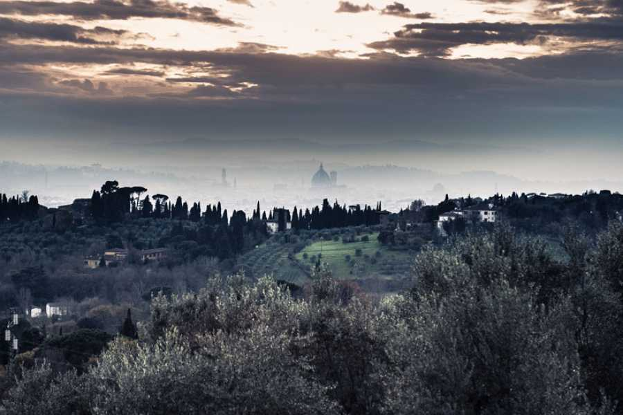 ACCORD Italy Smart Tours & Experiences GRAND PANORAMIC TOUR OF FLORENCE BY MINIVAN - PRIVATE TOUR