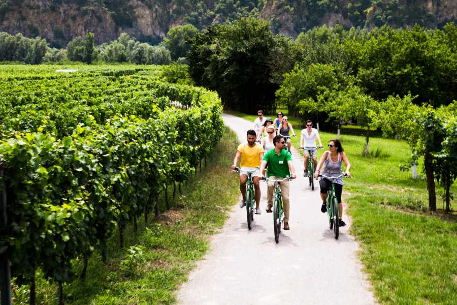 Vienna Explorer - Tours and Day Trips Wachau Valley Winery Bike Tour - Small Group