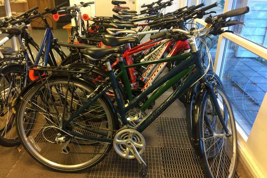 Gone Paddling Bicycle Rental- Balestrand