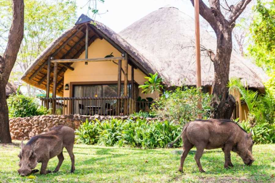 e-Tourism t/a SimplyTravel Chobe Marina Lodge