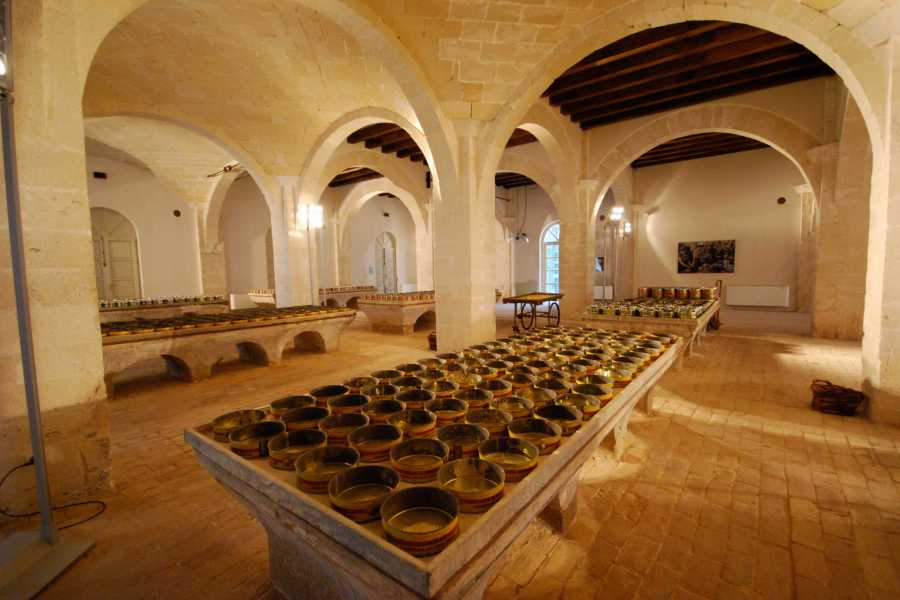 Travel Taste Sicily by Egatour Viaggi Ex Stabilimento Florio di Favignana