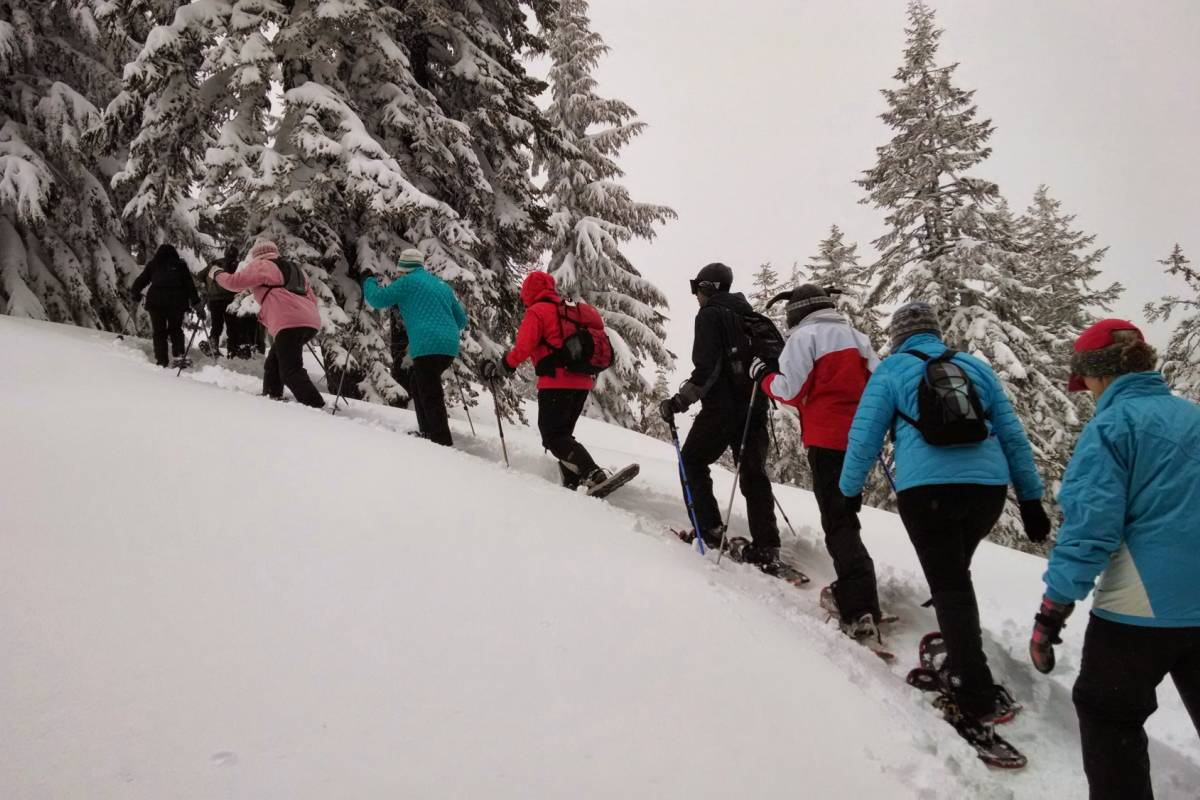 Gone Paddling Guided Snoweshoe Tours (Bergen)