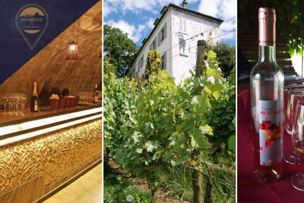 Memories DMC France Private Wine in Paris Tour including historic cellars visit, VIP access to the Clos Montmartre vineyard and tastings