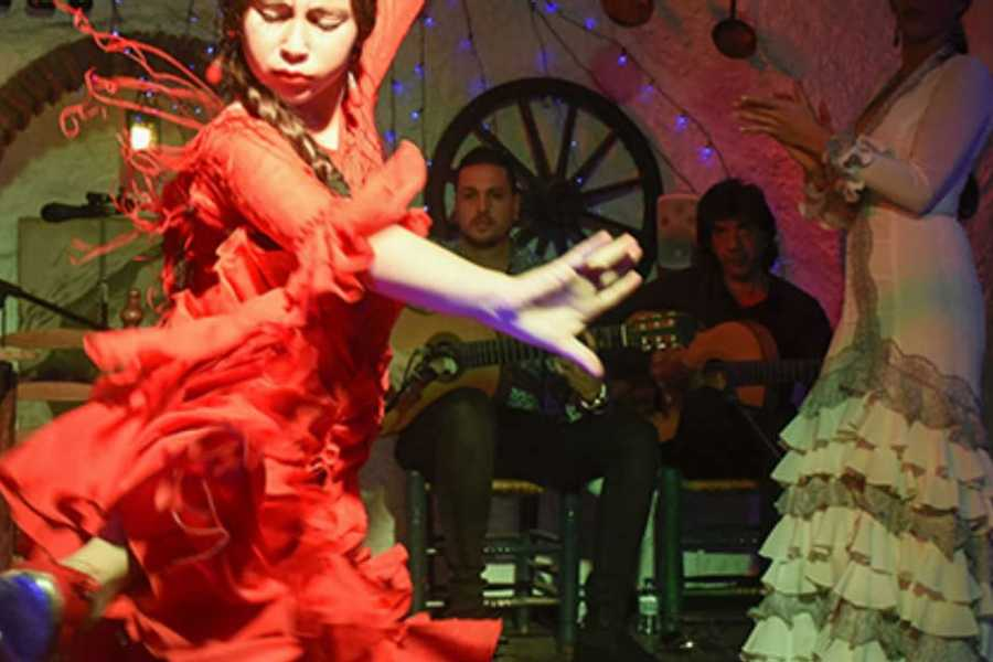 NHUE Flamenco night in Granada
