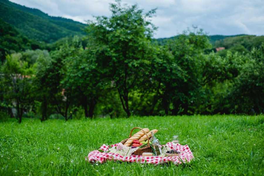 Carpathian Travel Center Gastronomical Walking Tour Sibiu