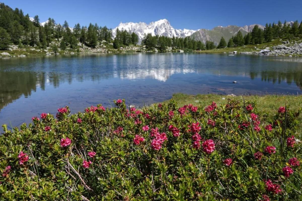 Rafting.it Excursion du lac d'Arpy (2063 Mt.)