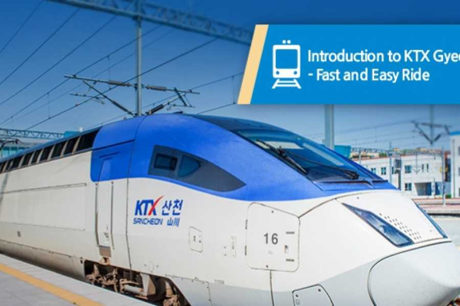 Kim's Travel KTX EXPRESS TRAIN