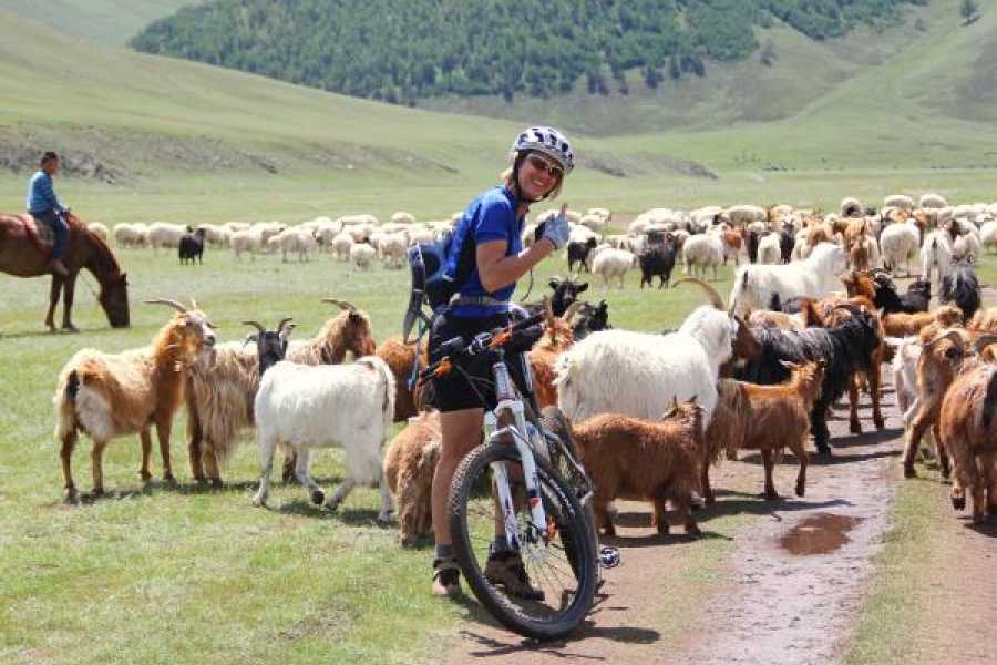 The Great Mongolian Adventures Khangai Mountain Biking 9 Days