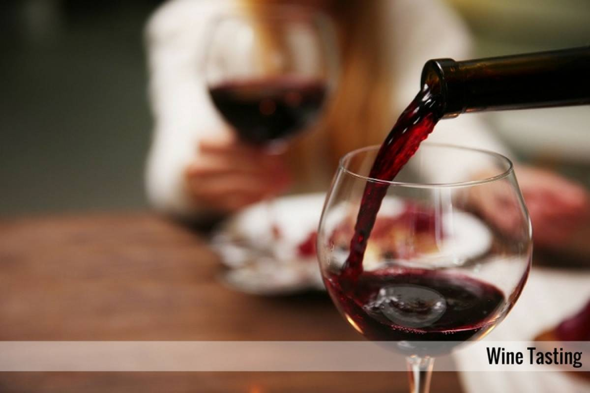 Enjoy33 Tour del Vino Vallagarina & Trento | 2 giorni