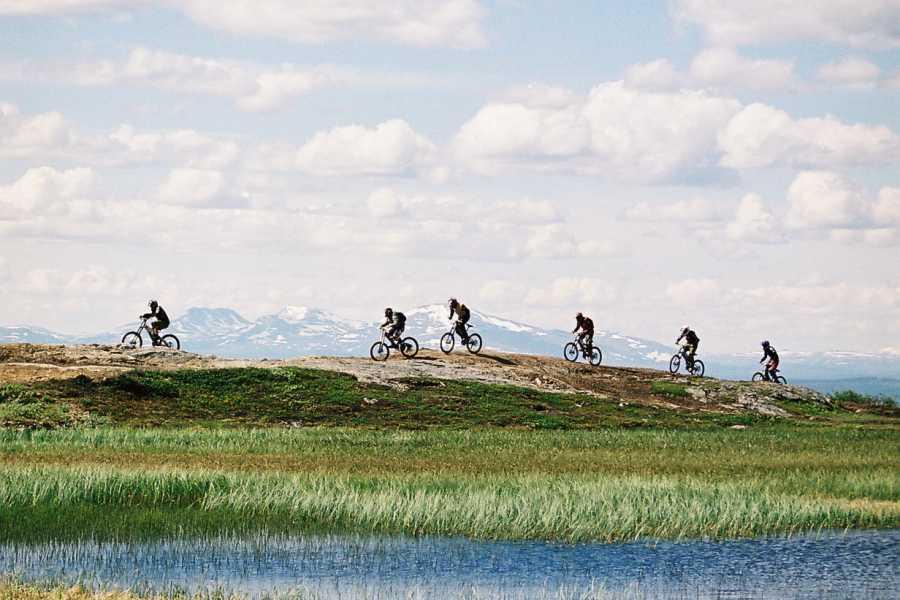 Puls Camp Åre C.Å.M.R Camp Åre Multisport Race