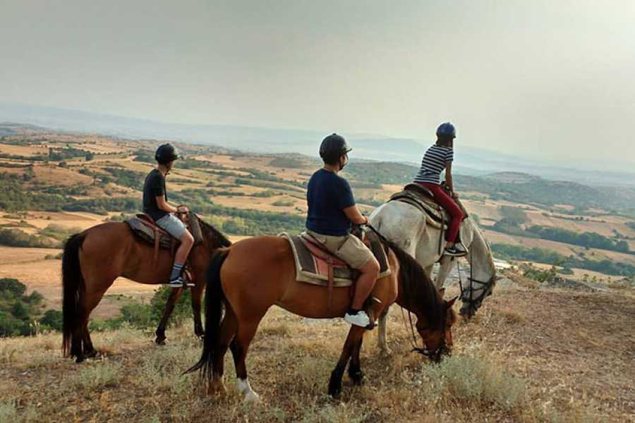 Grekaddict Horse Riding for experienced Equestrians in Thessaloniki