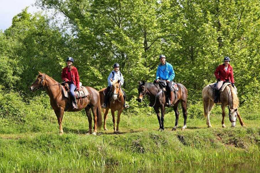 Grekaddict Horse Riding for Families in Thessaloniki