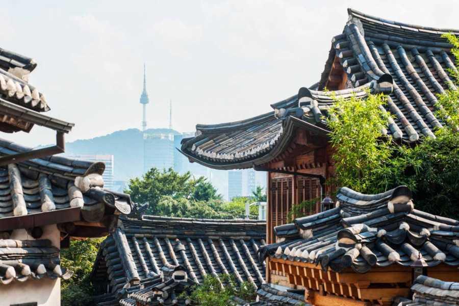Sports Medicine Summit Seoul City Full Day Explore
