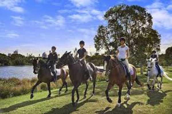 // Horse or Pony Riding Alanya