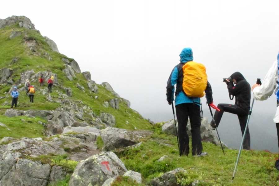 Lofoten Aktiv AS Hike Tjellbergtind