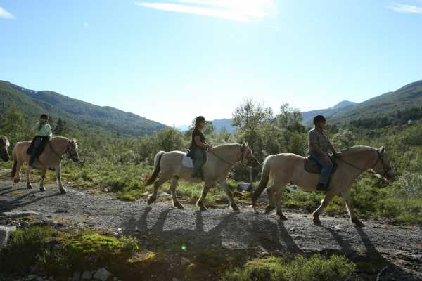 Norsk Fjordhestsenter Riding trips in Hjelmelandsdalen valley, afternoons at 16.00