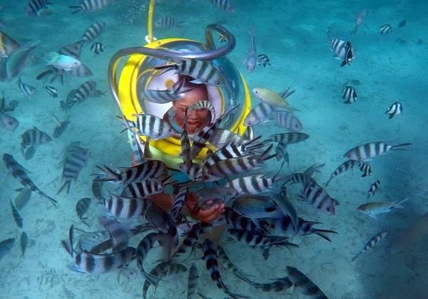 20 mins Undersea Walk