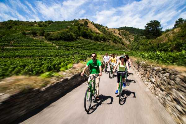 Vienna Explorer - Tours and Day Trips Private Wachau Valley Winery Bike Tour