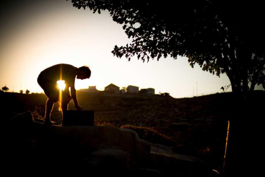 Wild-Trails Hinter der Fassade: Israelische Siedler - Eine ungefilterte Konflikt-Tour in der West Bank