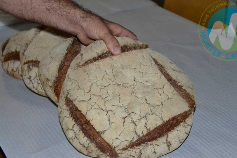 Gerês Holidays Workshop Castrejo Bread