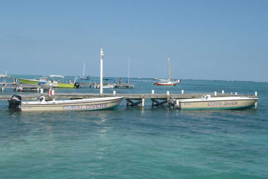Coral Divers Belize Boat Charter